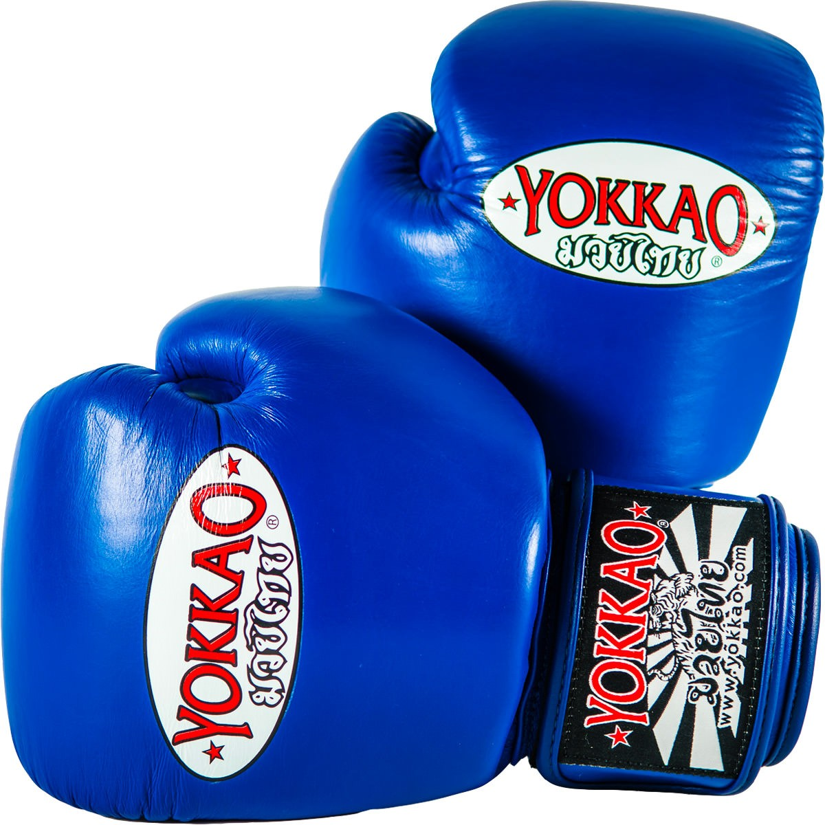 matrix-blue-boxing-gloves-ec0